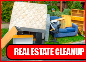 Real Estate Cleanup